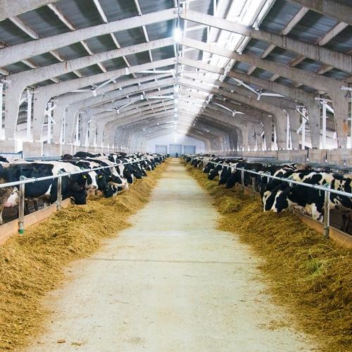 未来型の農業